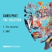 The Solution von CamelPhat