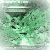 Bridge over Troubled Water (Radio Edit) de Roberto Bates
