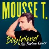 Boyfriend von Mousse T.
