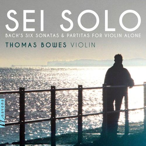 Sei Solo by Thomas Bowes