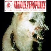 Various Xenopunks EP de Various Artists