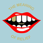 The Meaning of Relief by Bason
