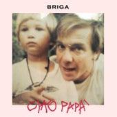 Ciao papà di Briga