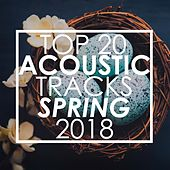 Top 20 Acoustic Tracks Spring 2018 de Guitar Tribute Players