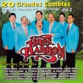 20 Grandes Cumbias, vol. 2 de Los Hermanos Barrón