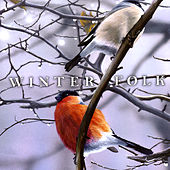 Winter Folk Compilation by Various Artists