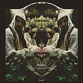 The Courage Of Others von Midlake