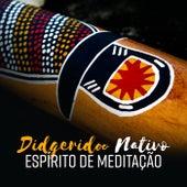 Didgeridoo Nativo (Espírito de Meditação - Mindfulness Australiano, Energia de Cura, Jornada Espiritual) de Various Artists