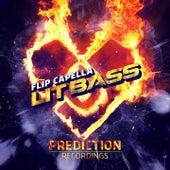 Lit Bass de Flip Capella