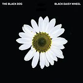 Black Daisy Wheel by Various Artists