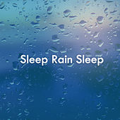 Sleep Rain Sleep von Various Artists