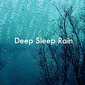 Deep Sleep Rain by Various Artists