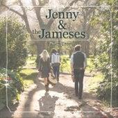 Fallen Tree by Jenny