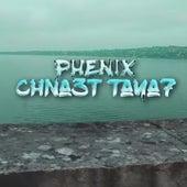 Chna3t Taya7 de Phenix
