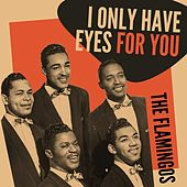 I Only Have Eyes for You by The Flamingos
