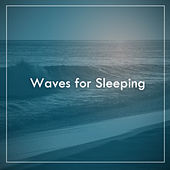 Waves for Sleeping de Various Artists