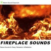 Fireplace Sounds by Nature Sounds (1)