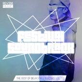 Festival Soundtrack - Best of Big Room & Electro, Vol. 13 von Various Artists