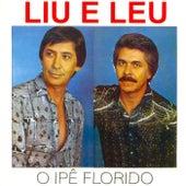 O Ipê Florido de Liu & Léu