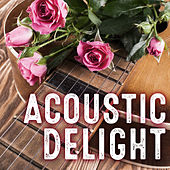 Acoustic Delight de Various Artists