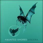 Viscera by Haunted Shores