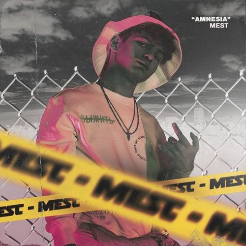 Amnesia de M.E.S.T.