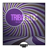 Tribalistic, Vol. 3 (The Sound of the Drums) by Various Artists
