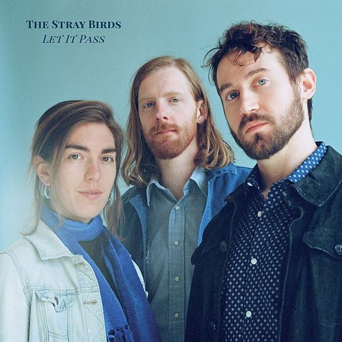 Nothing to Say About It Now by Stray Birds