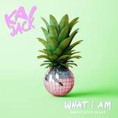 What I Am (Danny Dove Remix) de Kai Jack