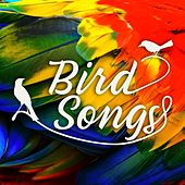 Birdsongs by Various Artists