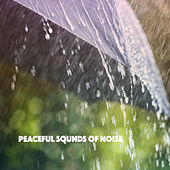 Peaceful Sounds Of Noise by Various Artists