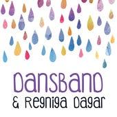 Dansband & regniga dagar by Various Artists