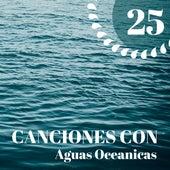 25 Canciones con Aguas Oceanicas - Olas del Mar y Otros Sonidos de la Naturaleza para Reducir el Estrés y Dormir Toda la Noche de Dormir Mejor Academy