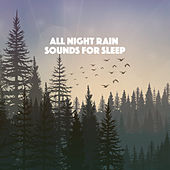 All Night Rain Sounds for Sleep by Various Artists