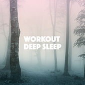 Workout Deep Sleep by Various Artists