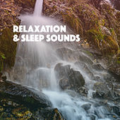 Relaxation & Sleep Sounds de Various Artists