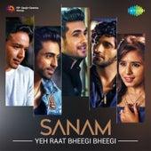 Yeh Raat Bheegi Bheegi - Single by Sanam