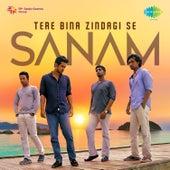 Tere Bina Zindagi Se - Single by Sanam