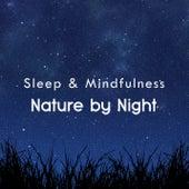 Nature by Night (Sleep & Mindfulness) by Sleepy Times