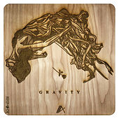 Gravity de Autograf