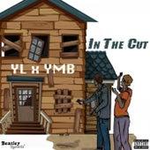 In the Cut de YL
