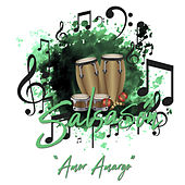 Salsasón: Amor Amargo de Various Artists