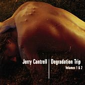 Degradation Trip Volumes 1 & 2 by Jerry Cantrell