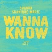Wanna Know by Sharda