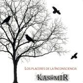 Los Placeres de la Inconsciencia by Kashmir