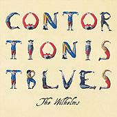 Contortionist Blues by The Wilhelms