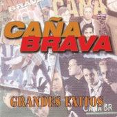 Grandes Exitos de Cana Brava