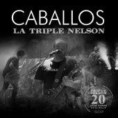 Caballos (En Vivo) de La Triple Nelson