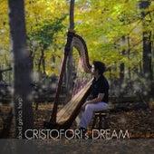 Cristofori's Dream von David Garcia
