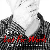 Lost for Words by Bob Levy